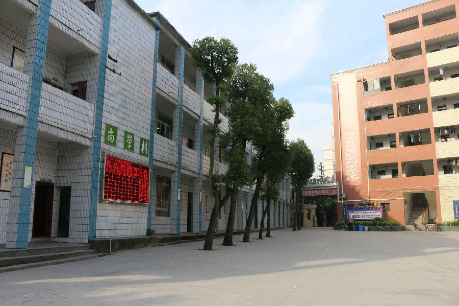 合川区龙市镇邮编_重庆市合川区龙市镇中心完全小学校